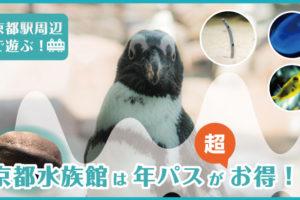 京都水族館のアイキャッチ