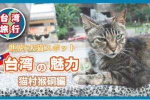 台湾の猫村